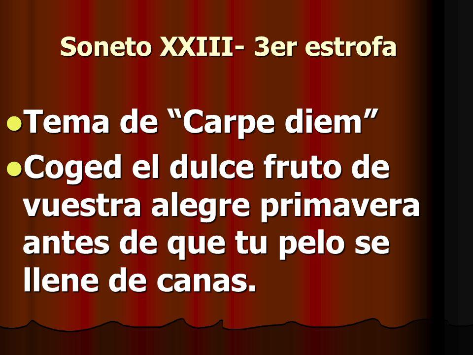 Soneto XXIII- 3er estrofa