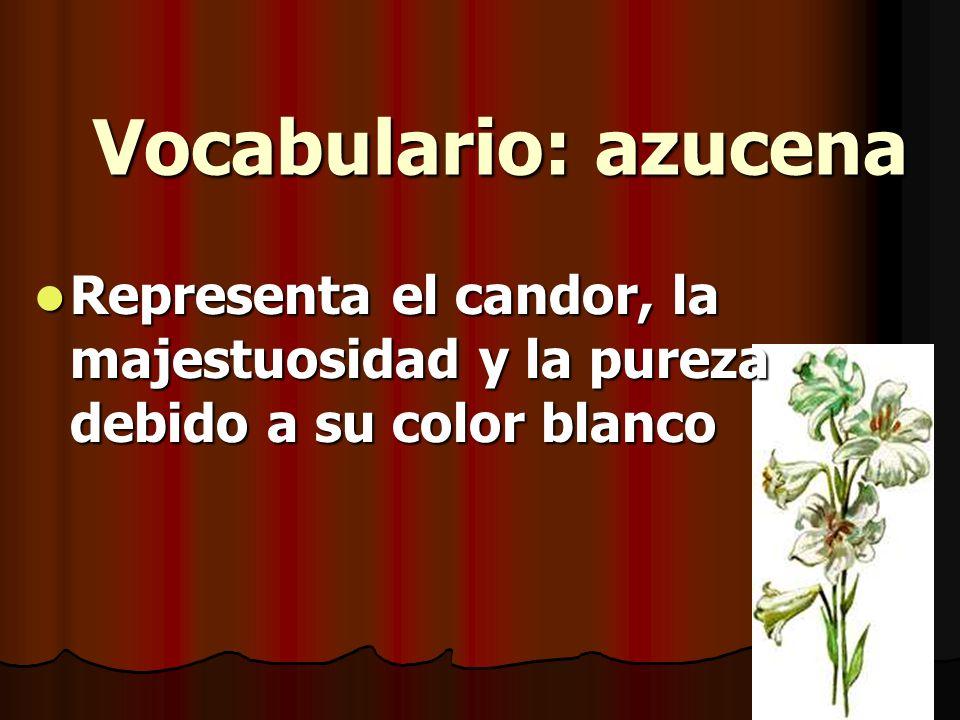 Vocabulario: azucena Representa el candor, la majestuosidad y la pureza debido a su color blanco