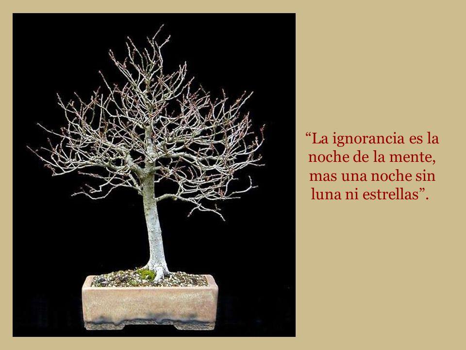 La ignorancia es la noche de la mente, mas una noche sin luna ni estrellas .