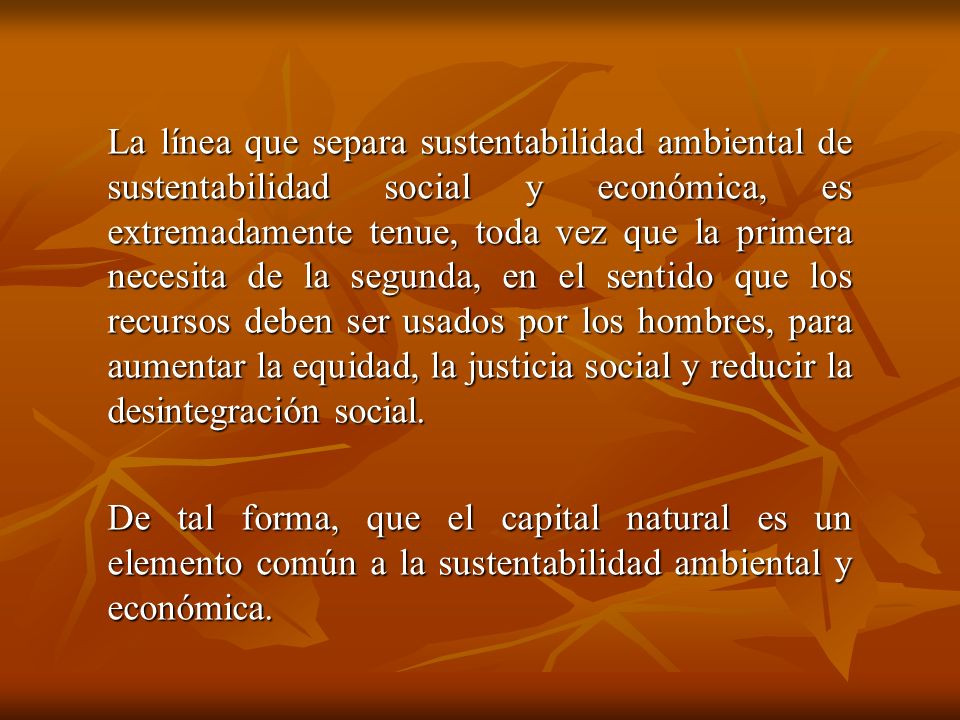 La línea que separa sustentabilidad ambiental de sustentabilidad social y económica, es extremadamente tenue, toda vez que la primera necesita de la segunda, en el sentido que los recursos deben ser usados por los hombres, para aumentar la equidad, la justicia social y reducir la desintegración social.