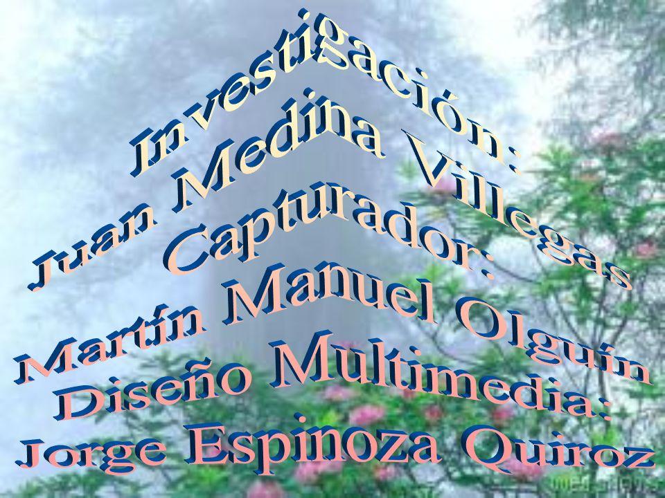 Investigación: Juan Medina Villegas. Capturador: Martín Manuel Olguín.