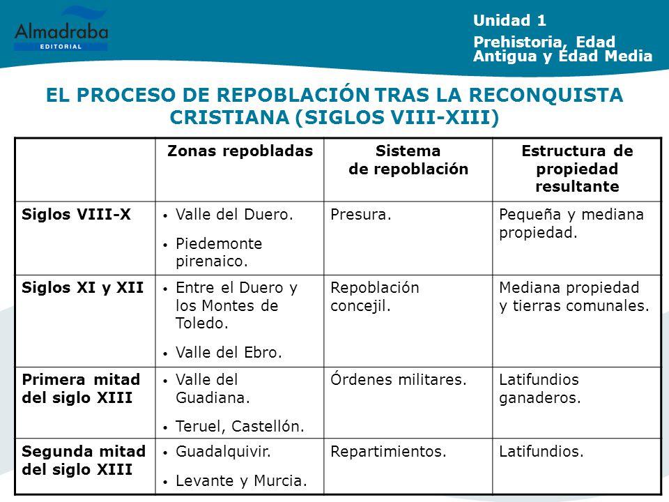 Sistema de repoblación Estructura de propiedad resultante