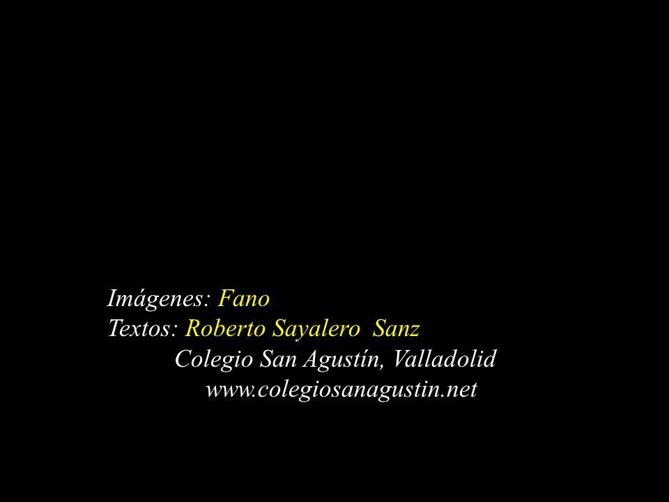 Imágenes: Fano Textos: Roberto Sayalero Sanz. Colegio San Agustín, Valladolid.