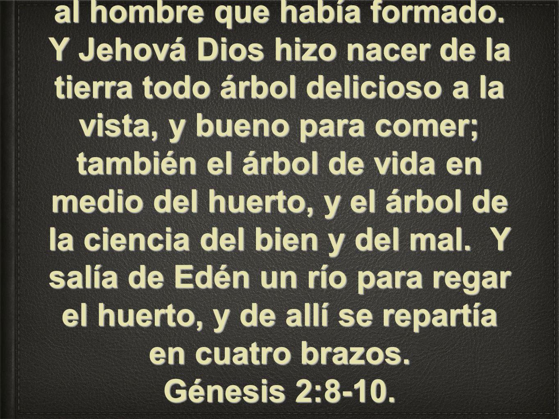 Y Jehová Dios plantó un huerto en Edén, al oriente; y puso allí al hombre que había formado.