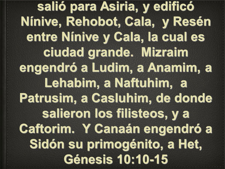 Y fue el comienzo de su reino Babel, Erec, Acad y Calne, en la tierra de Sinar.