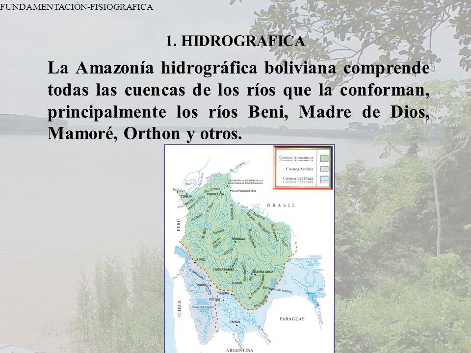 FUNDAMENTACIÓN-FISIOGRAFICA