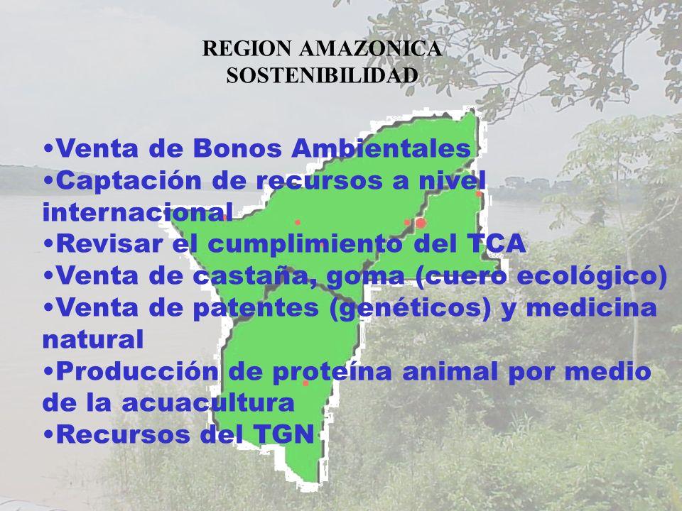 Venta de Bonos Ambientales Captación de recursos a nivel internacional