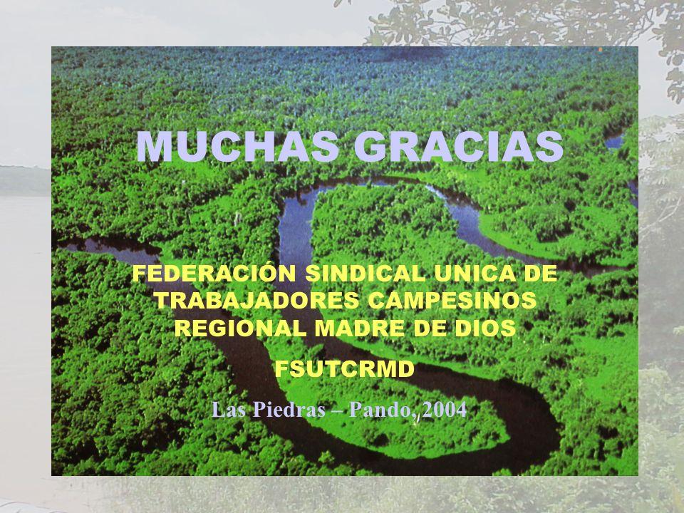 MUCHAS GRACIAS FEDERACIÓN SINDICAL UNICA DE TRABAJADORES CAMPESINOS REGIONAL MADRE DE DIOS. FSUTCRMD.