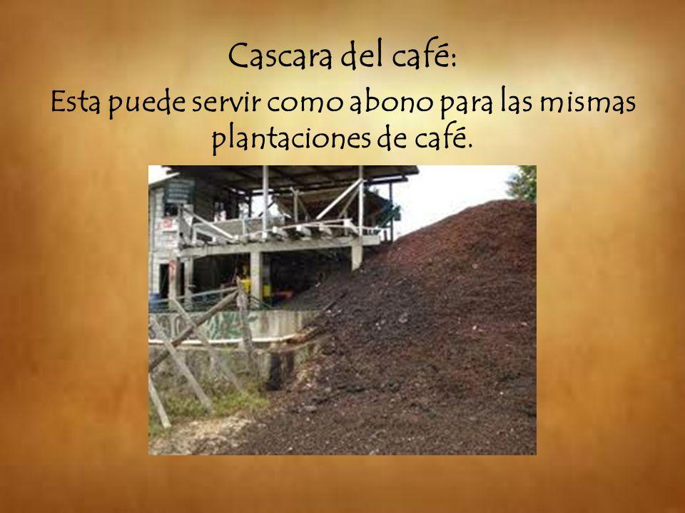 Esta puede servir como abono para las mismas plantaciones de café.