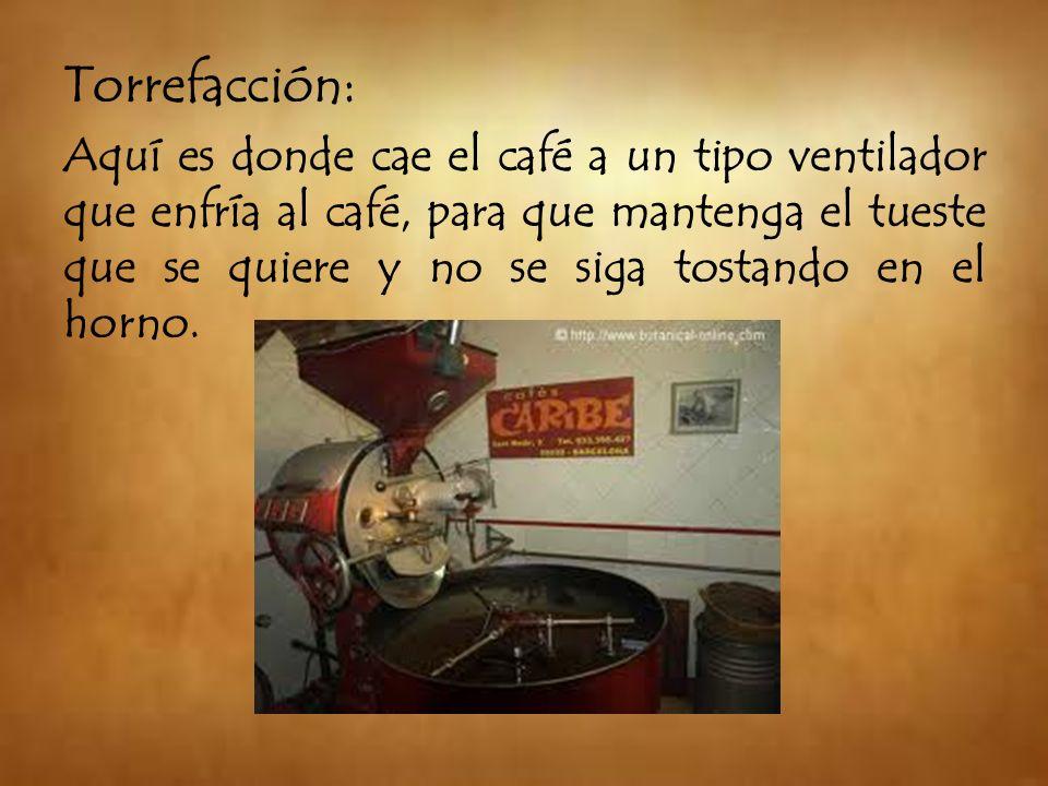 Torrefacción: