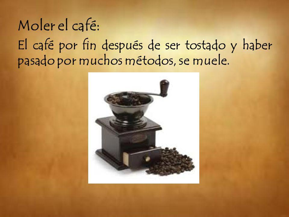 Moler el café: El café por fin después de ser tostado y haber pasado por muchos métodos, se muele.