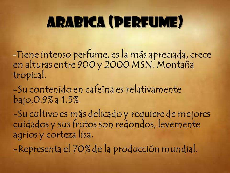 ARABICA (PERFUME) -Tiene intenso perfume, es la más apreciada, crece en alturas entre 900 y 2000 MSN. Montaña tropical.