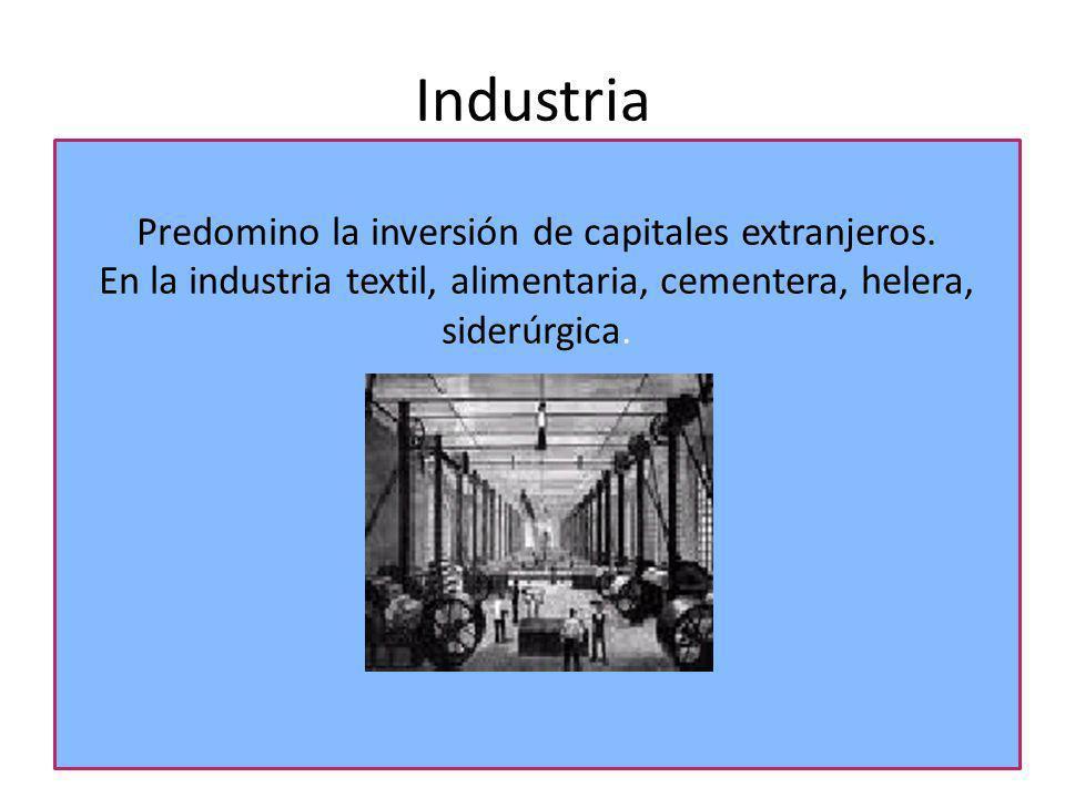 Industria Predomino la inversión de capitales extranjeros.