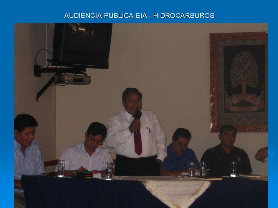 AUDIENCIA PUBLICA EIA - HIDROCARBUROS