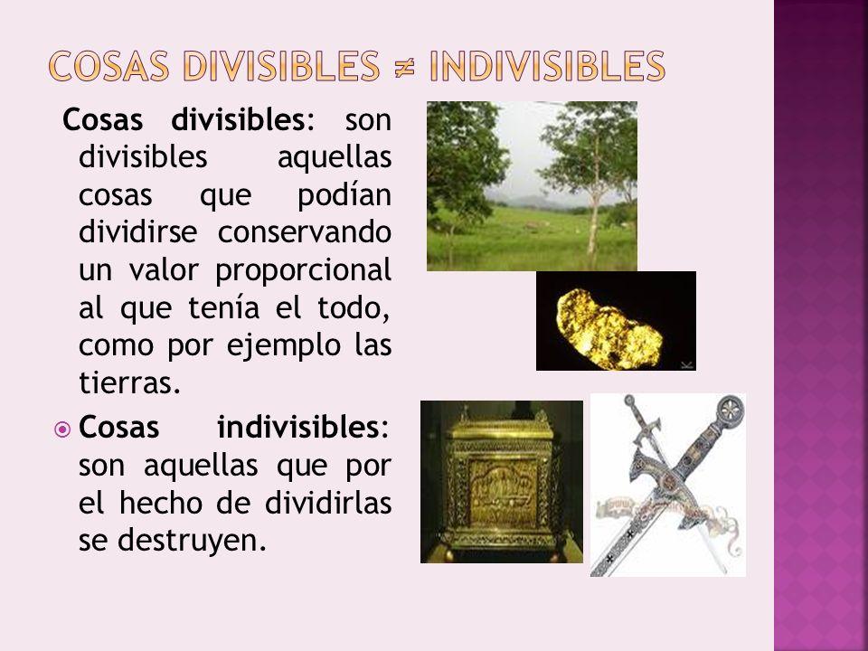 COSAS DIVISIBLES ≠ INDIVISIBLES
