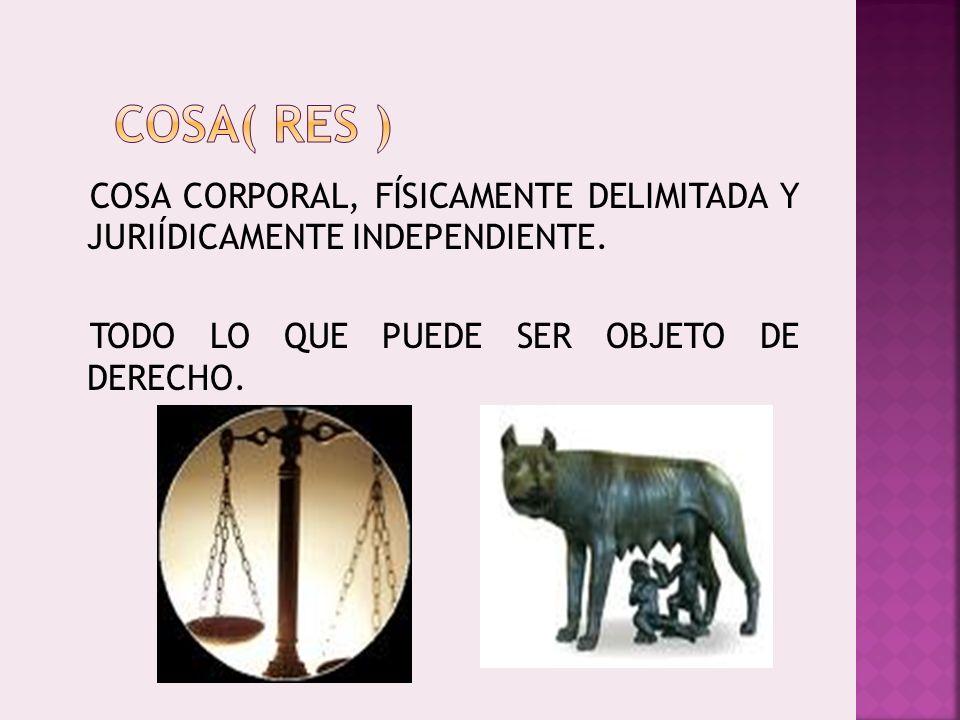 COSA( RES ) COSA CORPORAL, FÍSICAMENTE DELIMITADA Y JURIÍDICAMENTE INDEPENDIENTE.