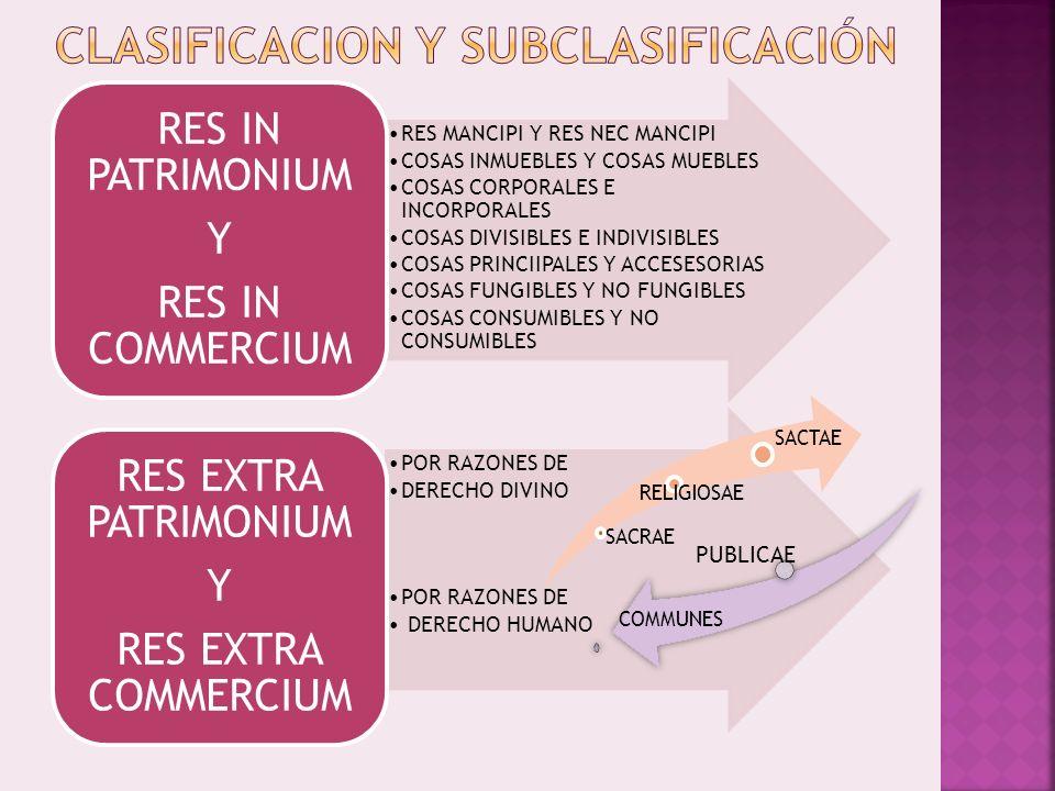 CLASIFICACION Y SUBCLASIFICACIÓN