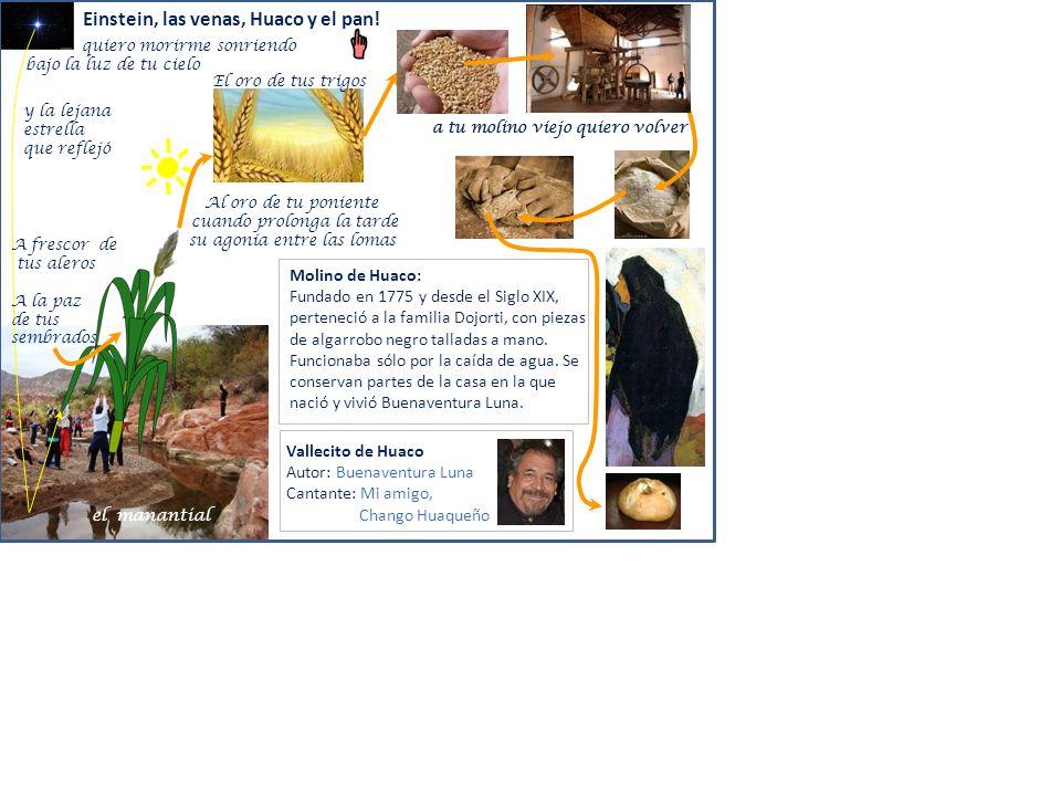 Einstein, las venas, Huaco y el pan!