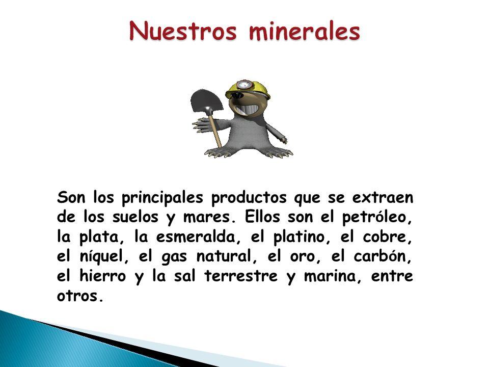 Nuestros minerales