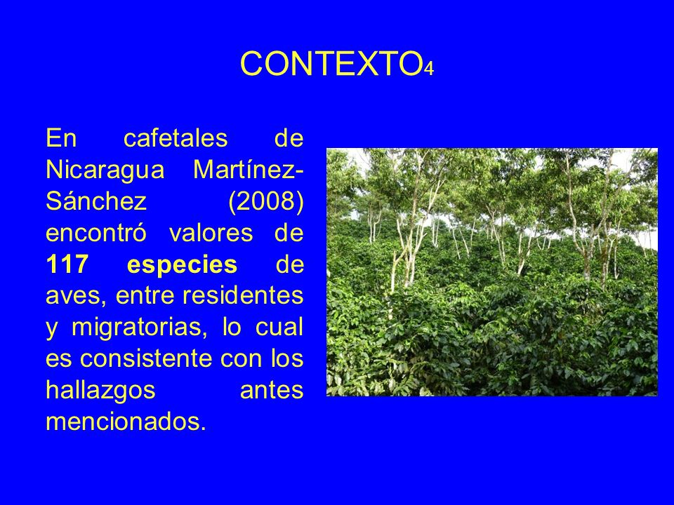 CONTEXTO4