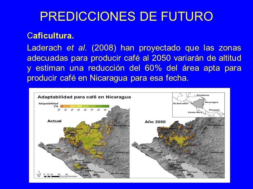 PREDICCIONES DE FUTURO