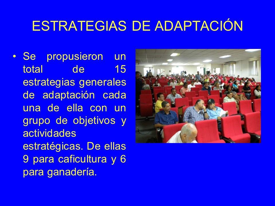 ESTRATEGIAS DE ADAPTACIÓN