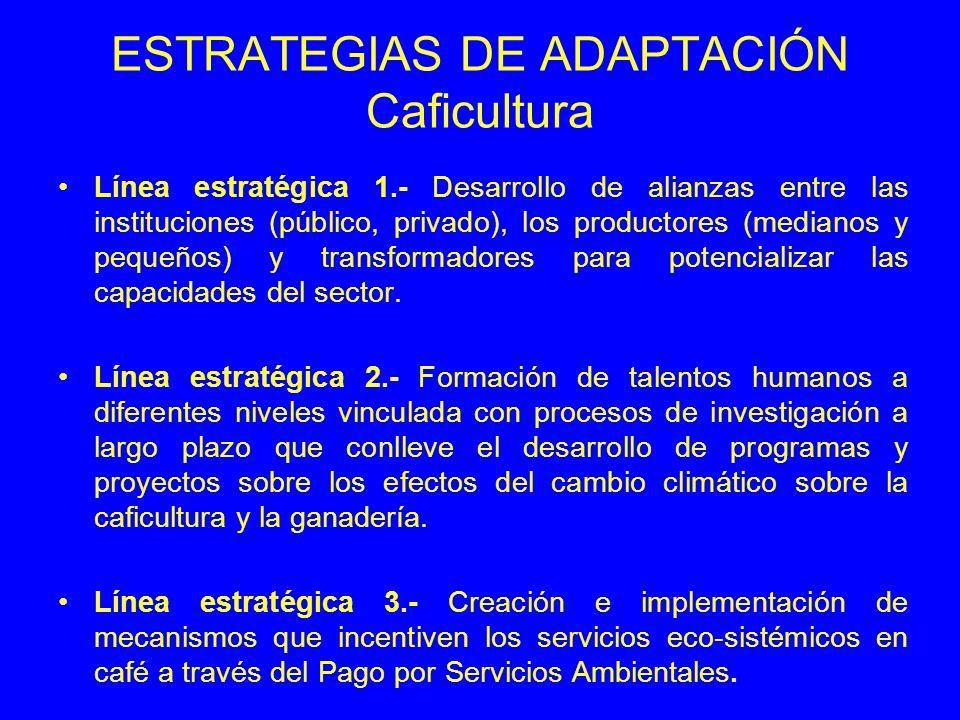ESTRATEGIAS DE ADAPTACIÓN Caficultura