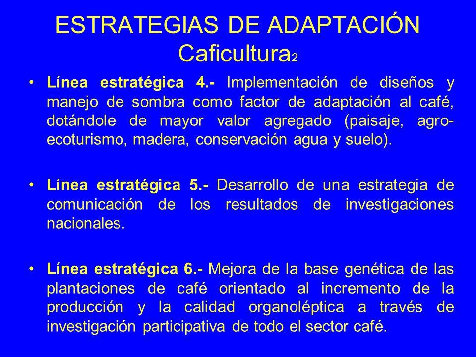 ESTRATEGIAS DE ADAPTACIÓN Caficultura2