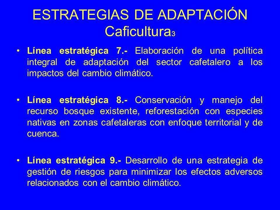 ESTRATEGIAS DE ADAPTACIÓN Caficultura3