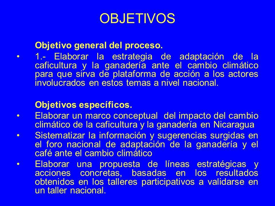 OBJETIVOS Objetivo general del proceso.