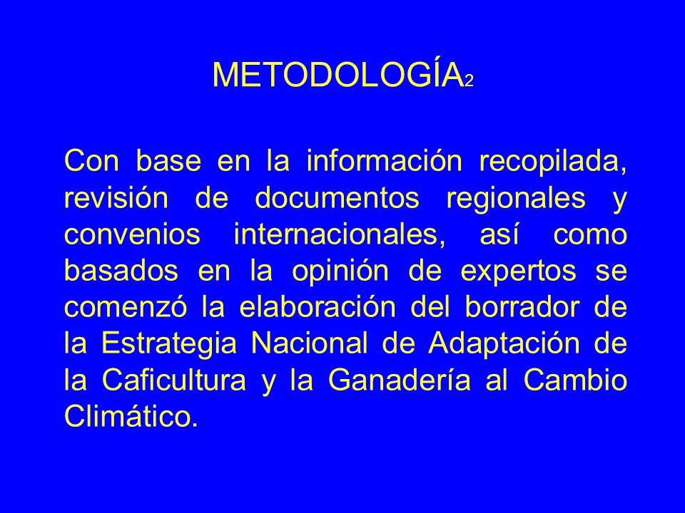 METODOLOGÍA2