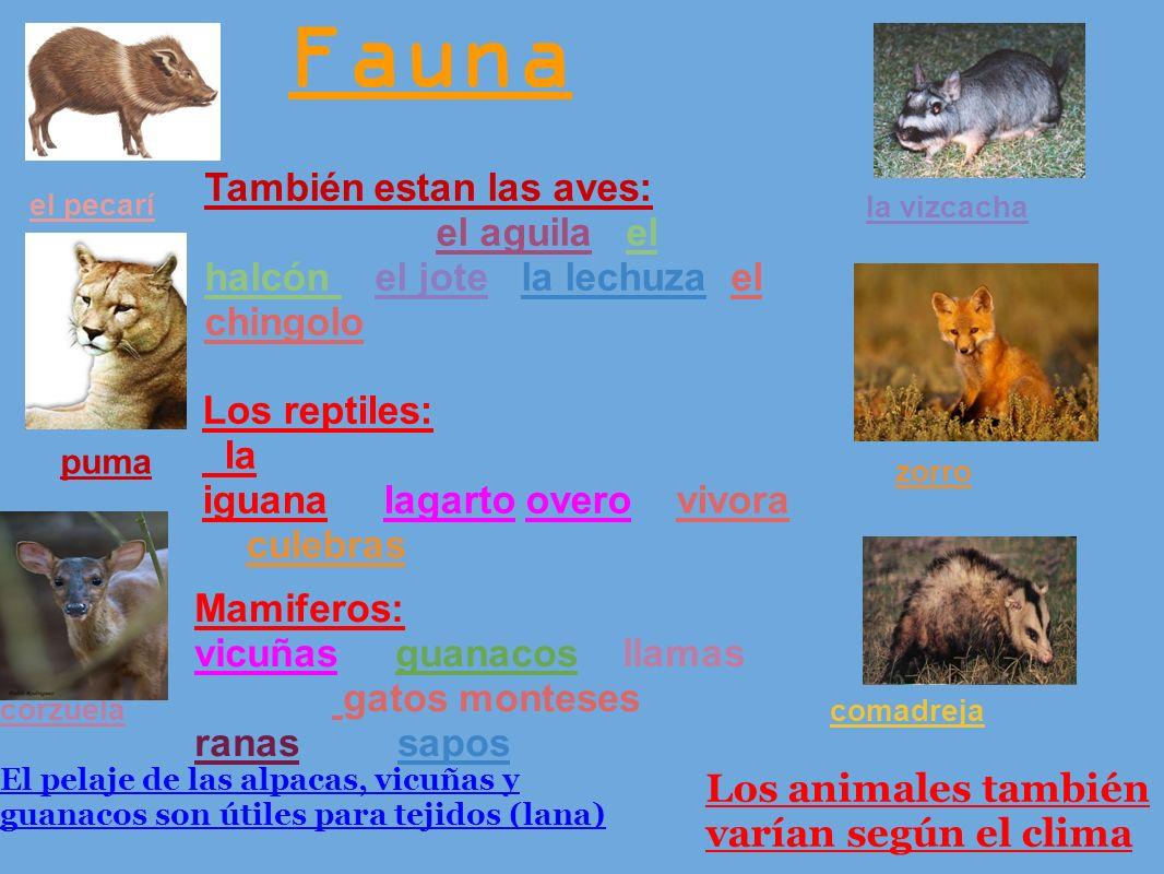 Fauna También estan las aves: