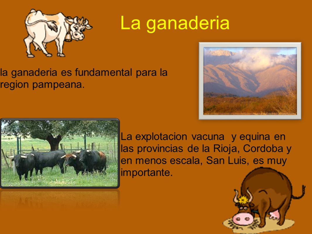 La ganaderia la ganaderia es fundamental para la region pampeana.