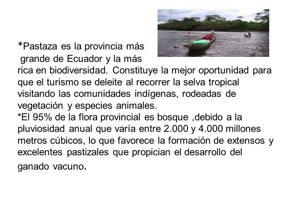 *Pastaza es la provincia más grande de Ecuador y la más rica en biodiversidad.