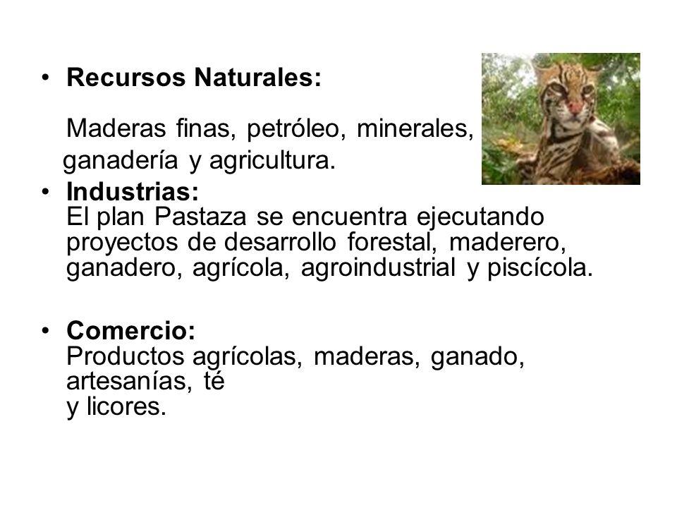 Recursos Naturales: Maderas finas, petróleo, minerales,