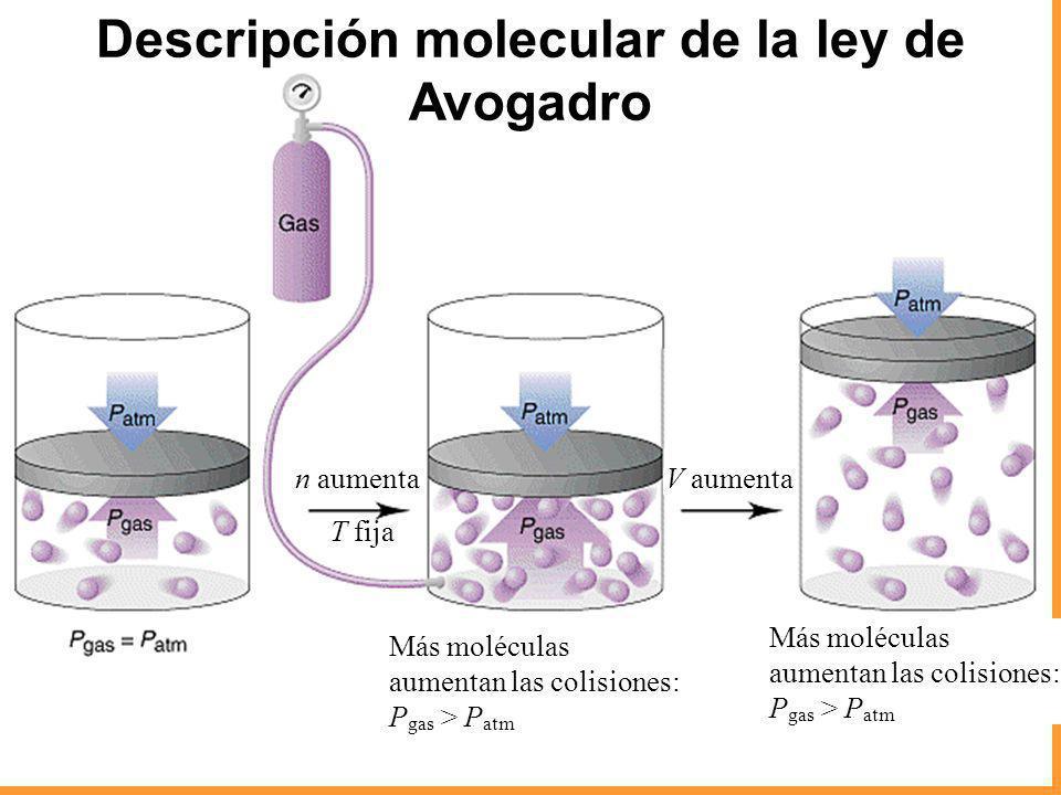Descripción molecular de la ley de Avogadro
