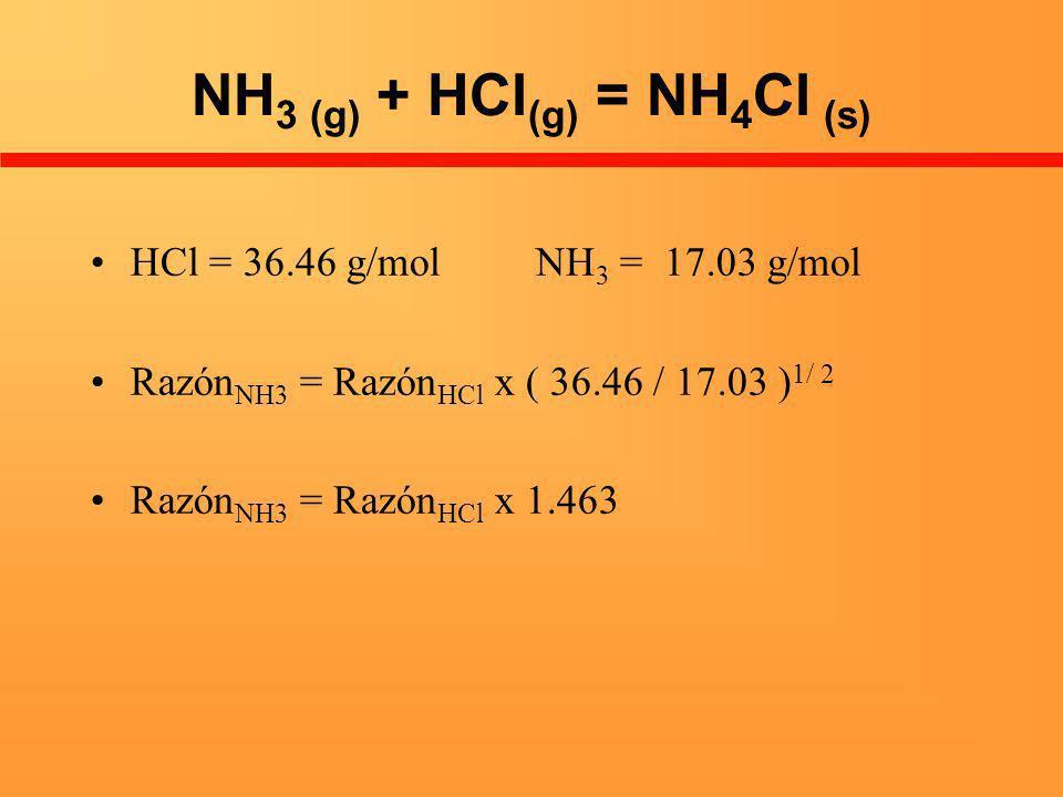 NH3 (g) + HCl(g) = NH4Cl (s)