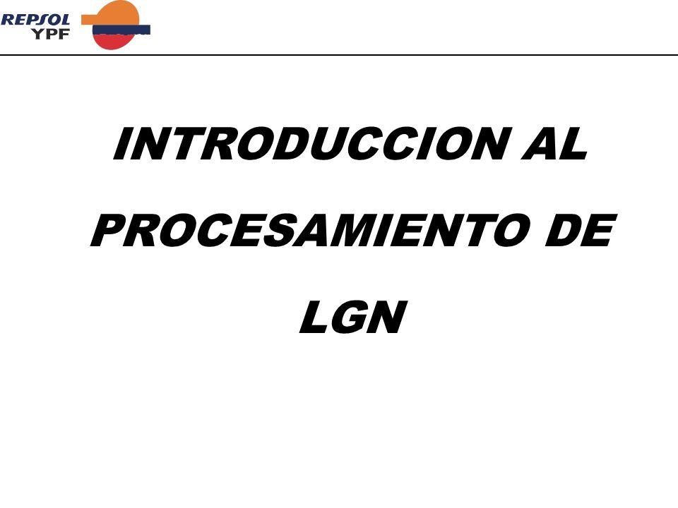 INTRODUCCION AL PROCESAMIENTO DE LGN