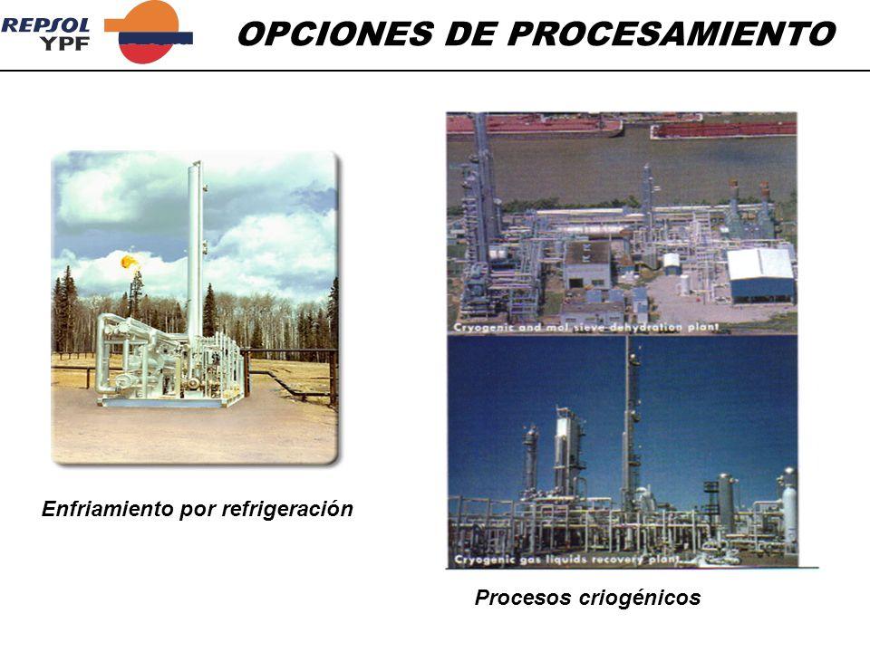OPCIONES DE PROCESAMIENTO