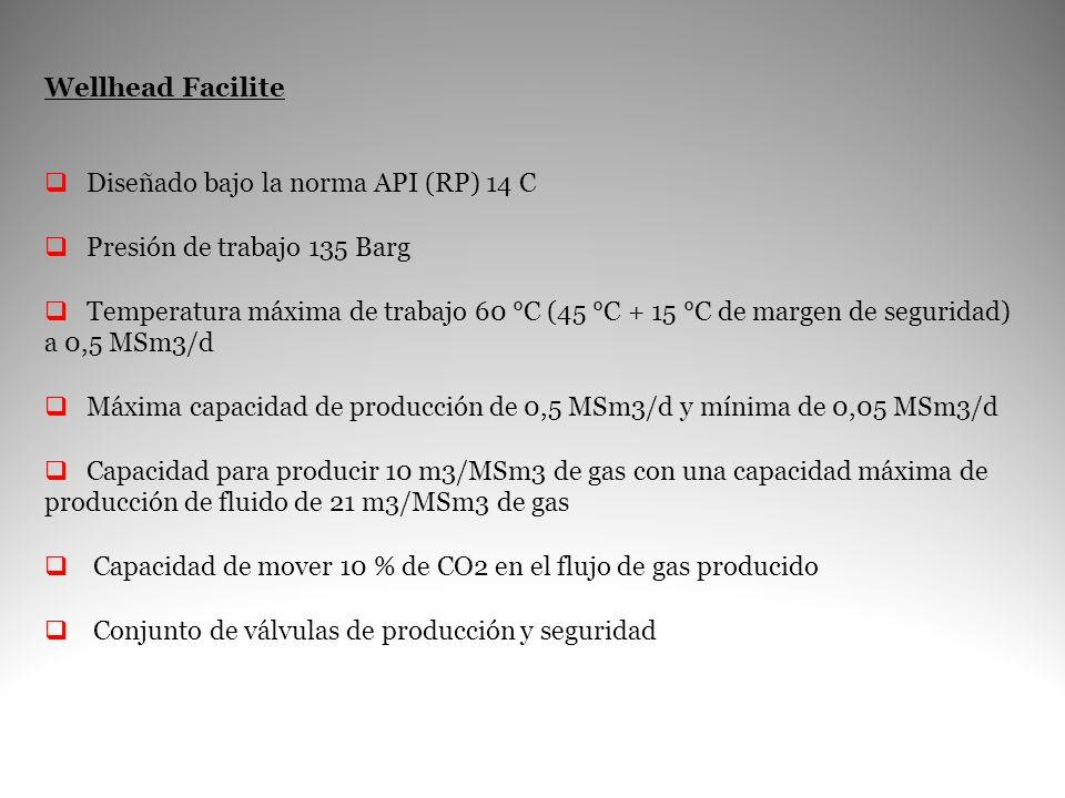 Wellhead Facilite Diseñado bajo la norma API (RP) 14 C. Presión de trabajo 135 Barg.