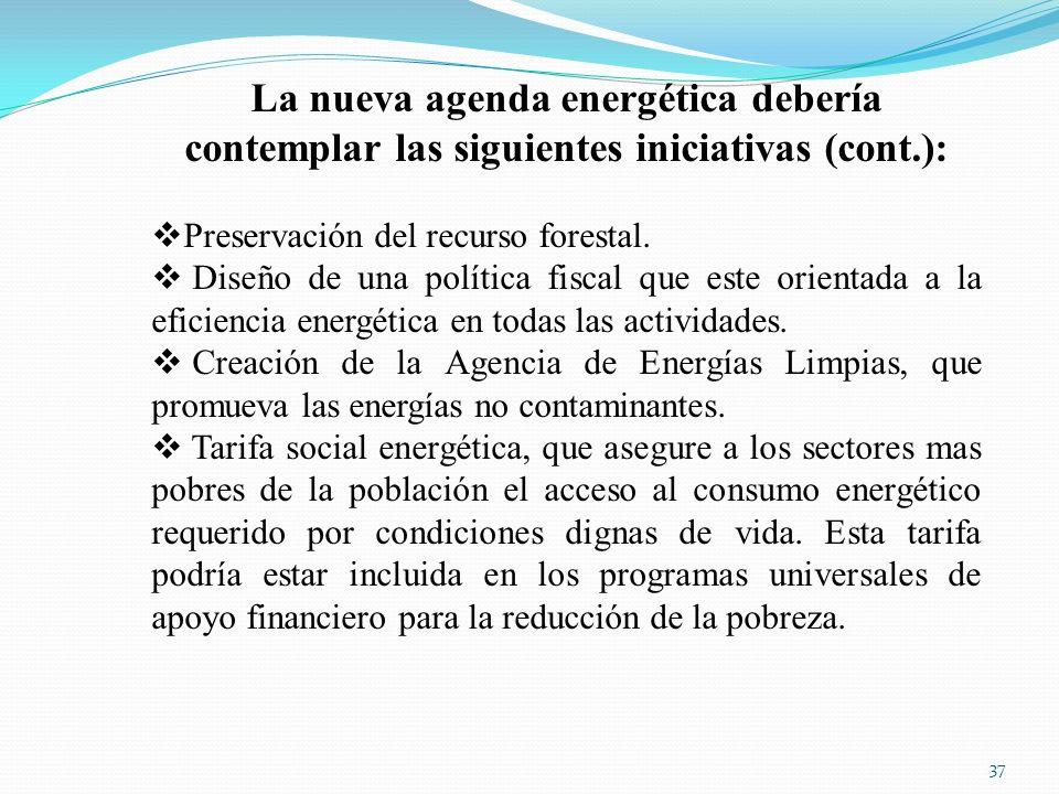 La nueva agenda energética debería contemplar las siguientes iniciativas (cont.):