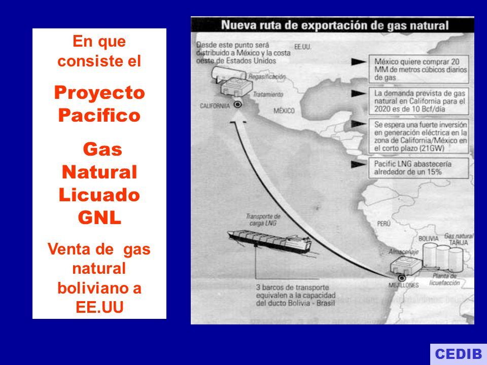 Gas Natural Licuado GNL Venta de gas natural boliviano a EE.UU
