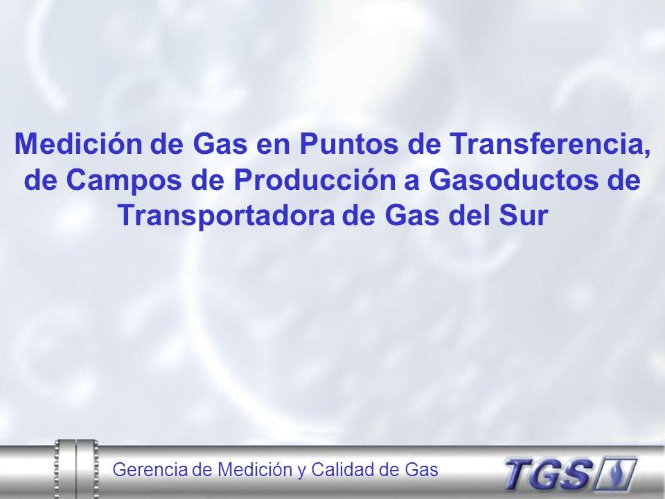 Medición de Gas en Puntos de Transferencia, de Campos de Producción a Gasoductos de Transportadora de Gas del Sur