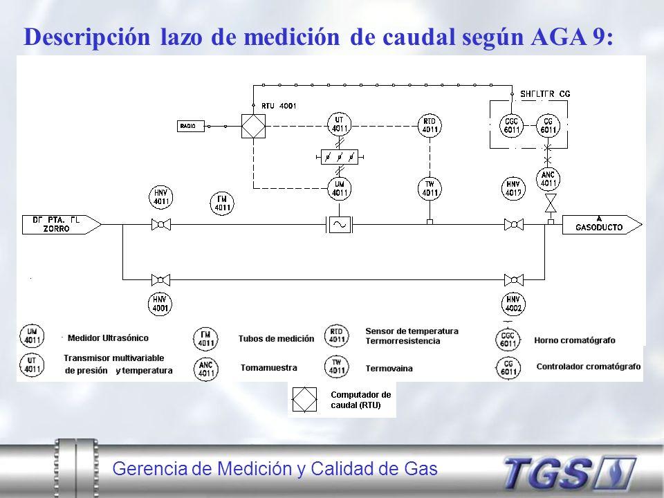 Descripción lazo de medición de caudal según AGA 9: