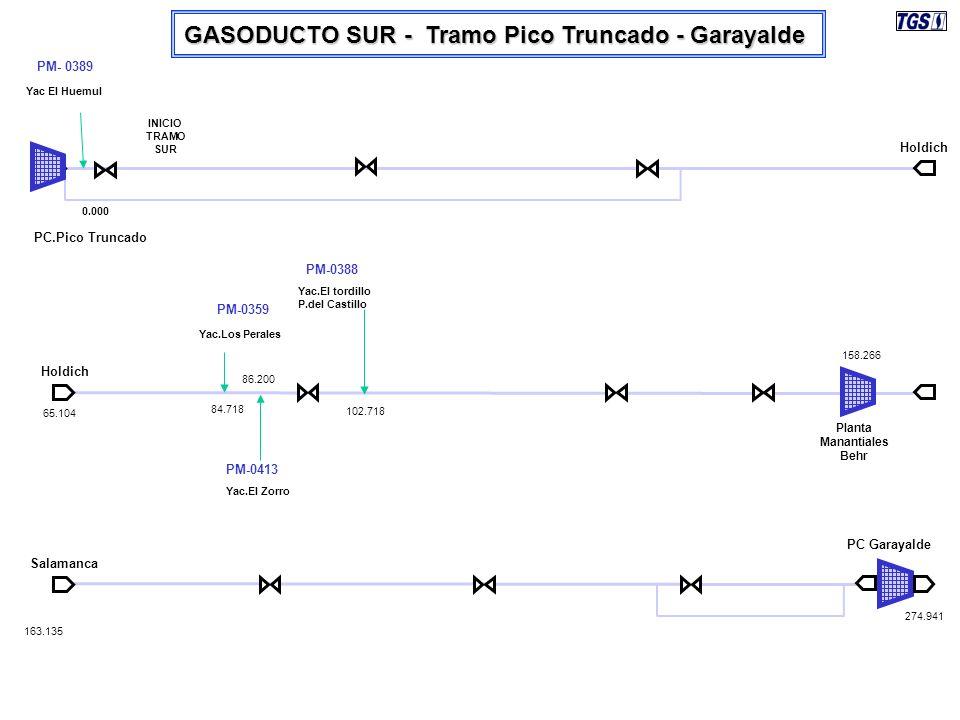 GASODUCTO SUR - Tramo Pico Truncado - Garayalde