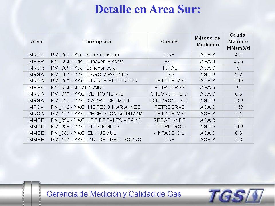 Detalle en Area Sur: Gerencia de Medición y Calidad de Gas