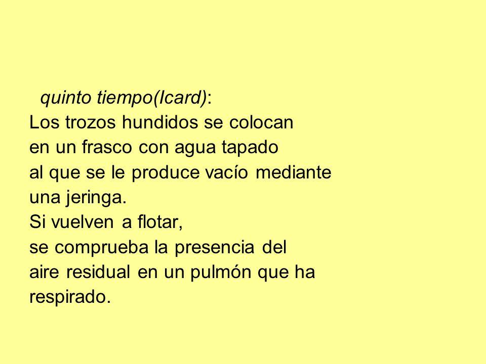 quinto tiempo(Icard):