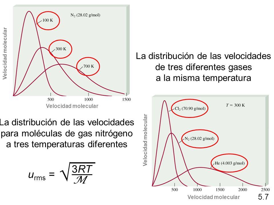  3RT urms = M La distribución de las velocidades