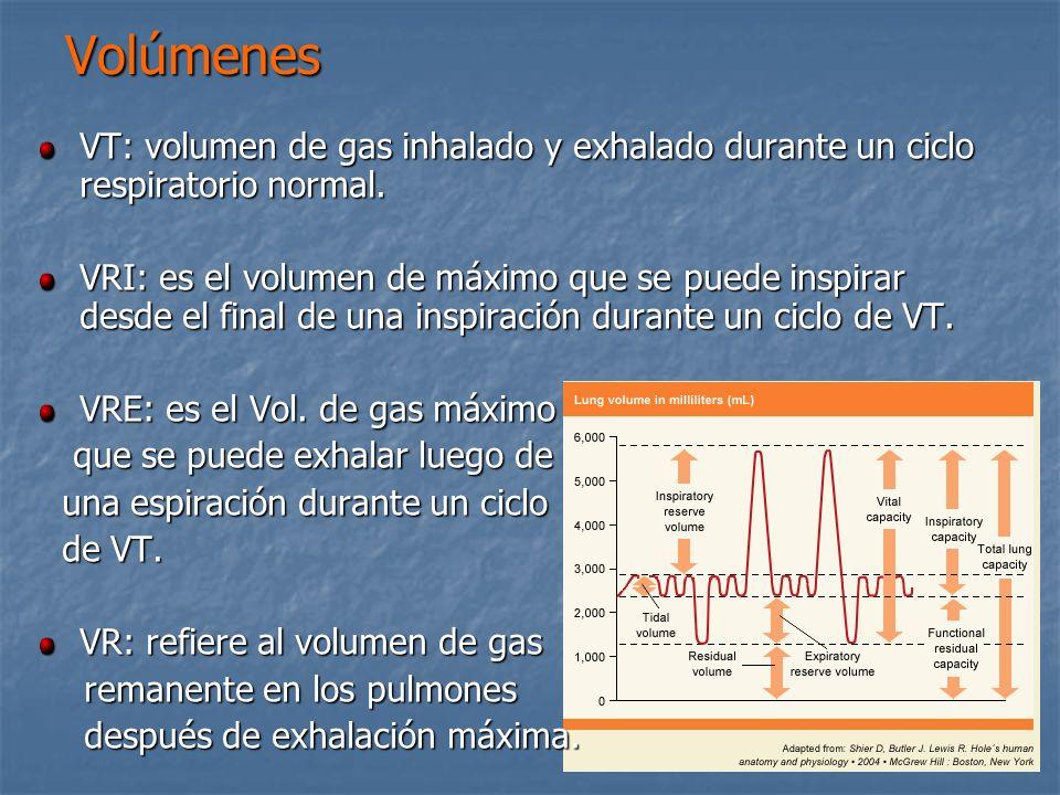 Volúmenes VT: volumen de gas inhalado y exhalado durante un ciclo respiratorio normal.