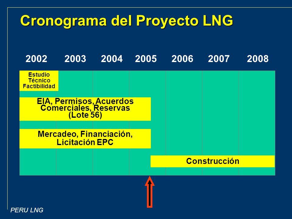 Cronograma del Proyecto LNG